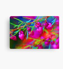 I Can Sing A Rainbow Too..... Canvas Print