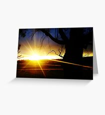 Captured By Light Greeting Card