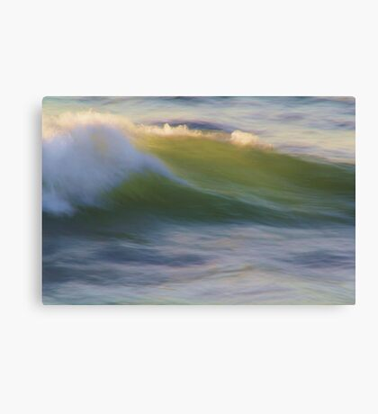 Wave in Abstract Canvas Print