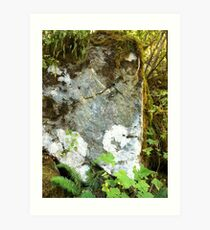 Rock Face. Mt. Baker National Forest Art Print