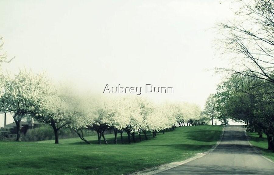 Backspace by Aubrey Dunn