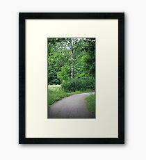 forest road Framed Print