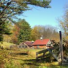 Shilo Farm by Monica M. Scanlan