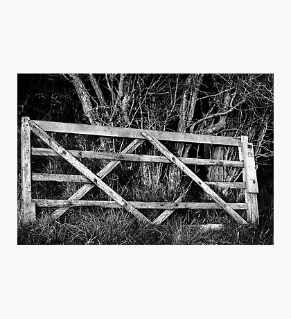 Forgotten Gate Photographic Print