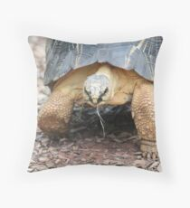 Slow and Steady Wins the Race Throw Pillow