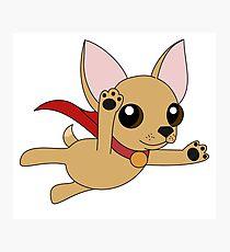 Super Chihuahua! Photographic Print