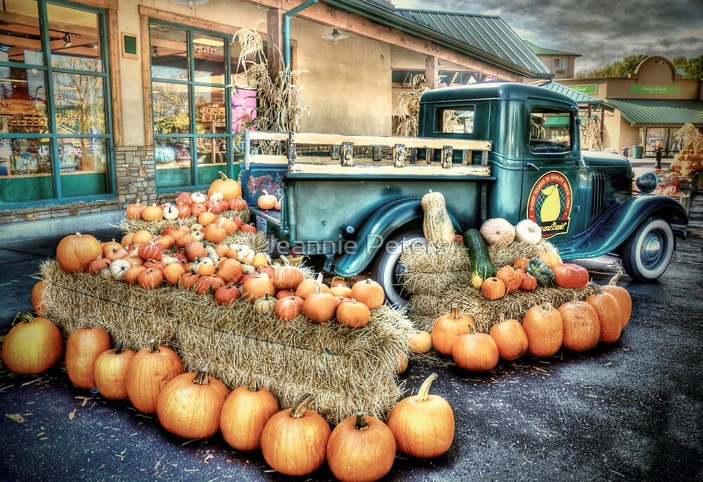 Autumn at Harry & Davids by Jeannie Peters