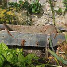LIndisfarne Castle, Gertrude Jekyll garden barrow by BronReid