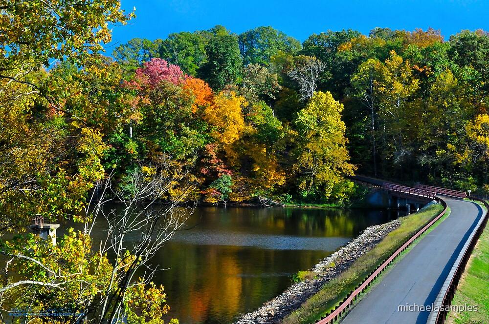 Murphysboro Lake (5) by michaelasamples
