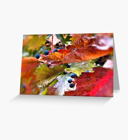 Pleasant Rainy Day Greeting Card