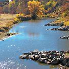 Autumn at Skunk Creek by Greg Belfrage