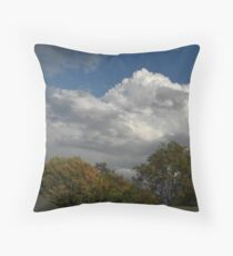 Fall 2012 Collection 1 Throw Pillow