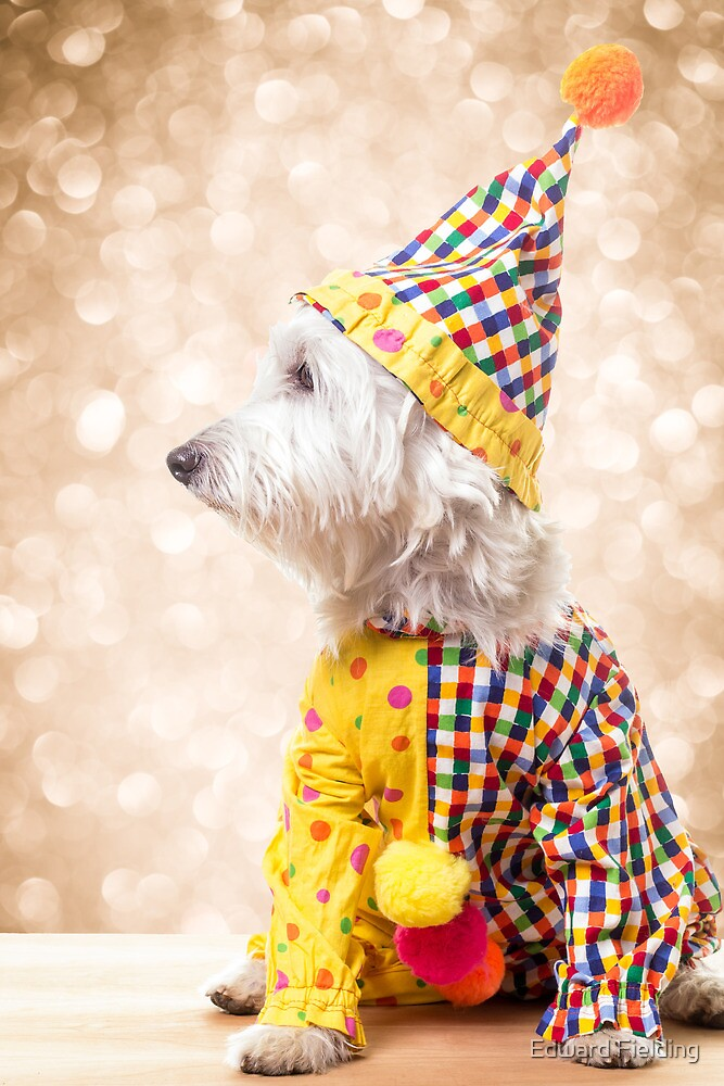 Circus Clown Dog by Edward Fielding