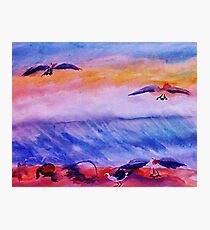 Seagulls in the surf, watercolor Photographic Print