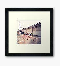 63 Framed Print