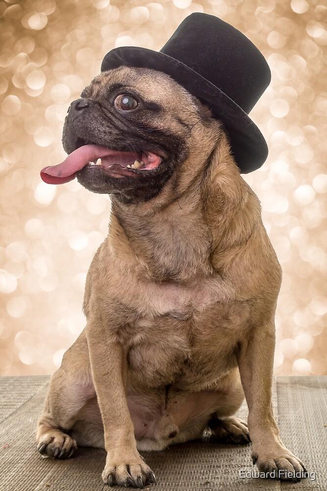 Crazy Top Dog by Edward Fielding