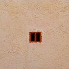The Tiny Window by Fara