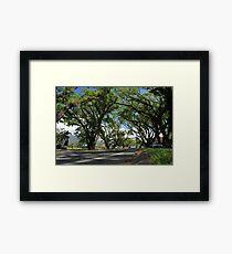 MCC Mossman Streetscape Framed Print
