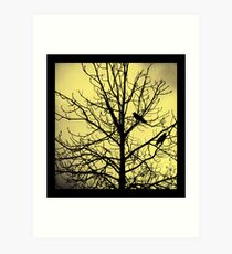 A Tale Of Two Crows Art Print