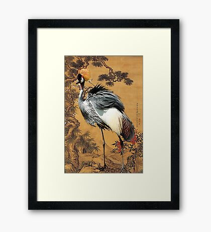 Pine ,Plum and Crane  Framed Print
