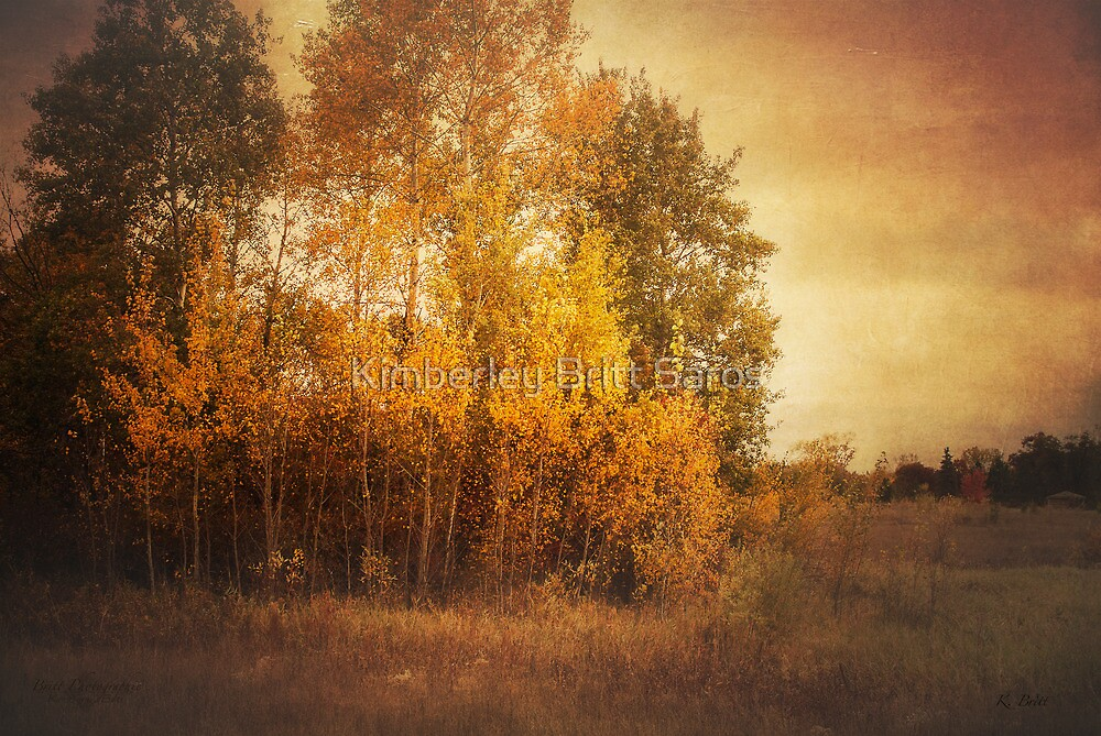 Autumn Landscape by KBritt