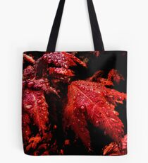 A Time To Come, A Time Of The Past Tote Bag