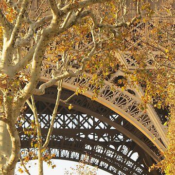Paris in summer by bethbatch20