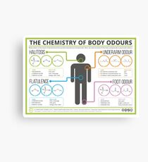 The Chemistry of Body Odours Canvas Print