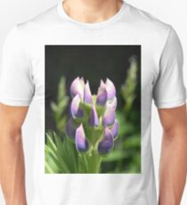 Purple Lupin T-Shirt