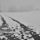 2012 - first snow by Ursa Vogel