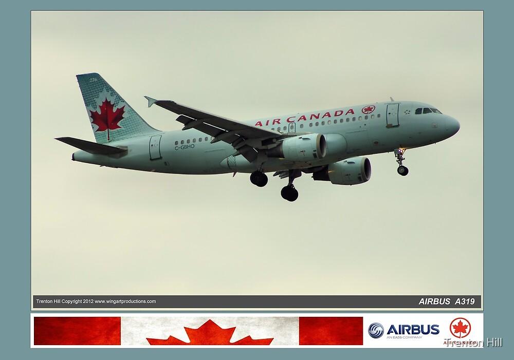Air Canada Airbus 319 by Trenton Hill