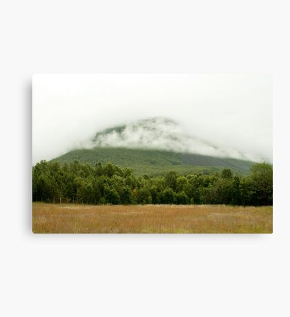 Olderdalen Canvas Print