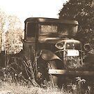Let's Take A Ride  by Vintageskies