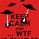 Keep calm and carry ... WTF is that ? by queensoft