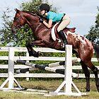Knabbstrupper Pony Stallion by Emily Peak
