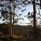 Sundown On The Ridge by aussiebushstick