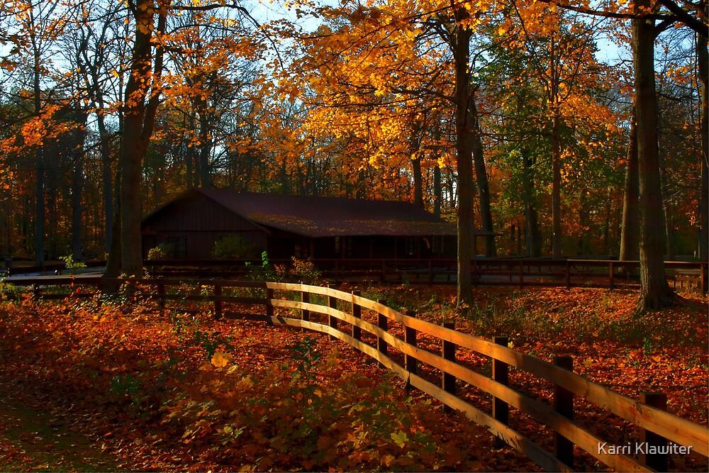 Autumn Park by Karri Klawiter