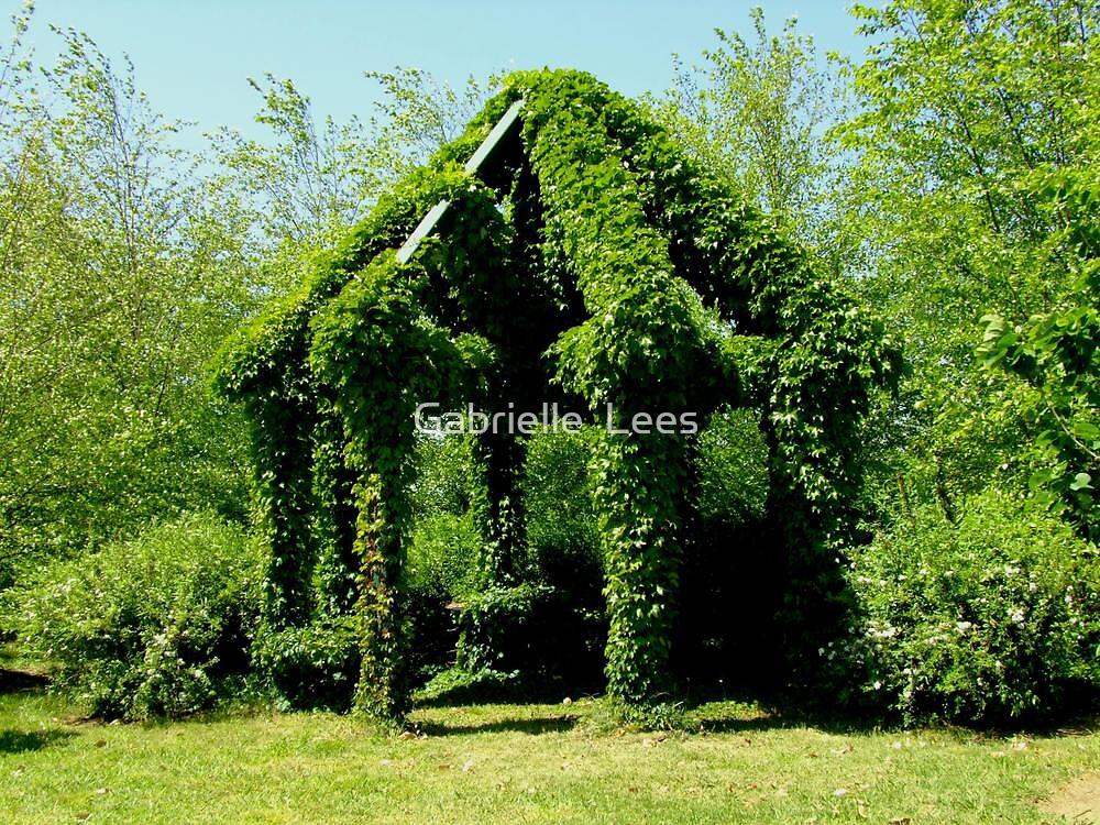 Albion Farm Open Garden by Gabrielle  Lees