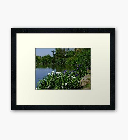 Albion Farm Open Garden Framed Print