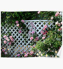 Rosalee Cottage Garden Poster