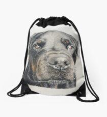 Max the beautiful Rottweiler Drawstring Bag