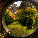 Wonderland - Bisley Gardens - Mt Wilson NSW Australia by Brad Woodman