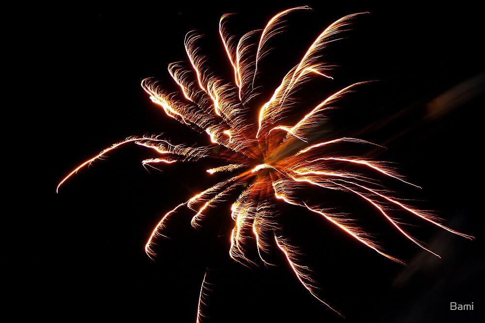Fireworks by Bami