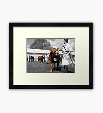 Northumberland Show 2012 Framed Print
