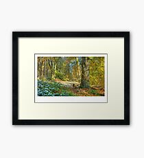 Lickey Hills, Worcestershire Framed Print