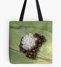 Common Green Shield Bugs Day 3 Tote Bag