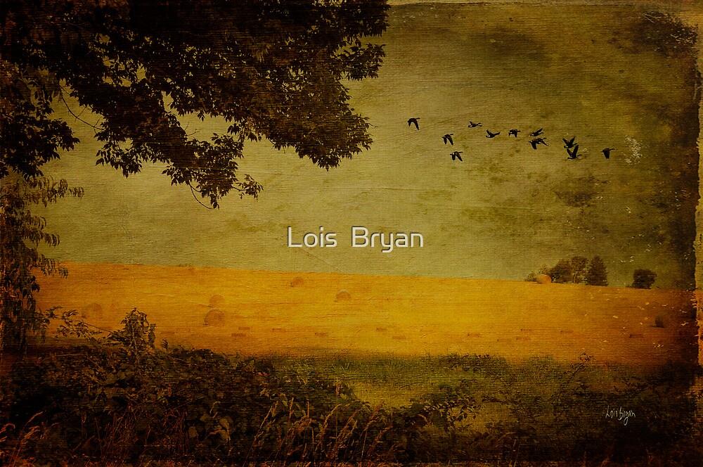 September by Lois  Bryan