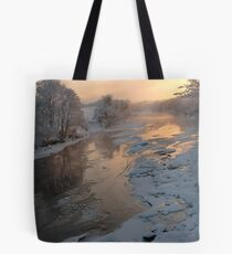 Winter View Tote Bag