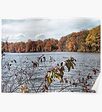 Lake Newport in Autumn Poster