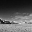 Leckhampton Hill, Cheltenham by Nick  Gill